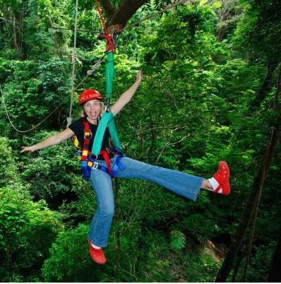 Extraordinary access to the canopy of the ancient Daintree Rainforest.