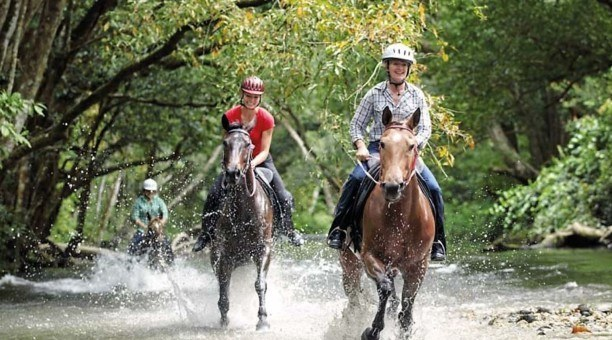 horse riding Cairns North Queensland Australia
