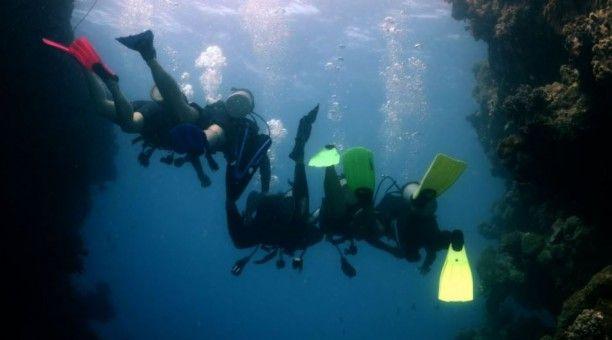4 Day Liveaboard Resort Dive