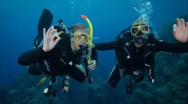 scuba dive the Great Barrier Reef Australia