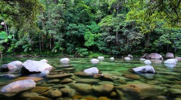 Mossman Gorge, North Queensland