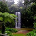 Tropical Getaway (3 day)