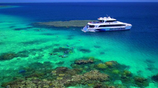 Port Douglas Reef Cruise and Aboriginal Dinner Show