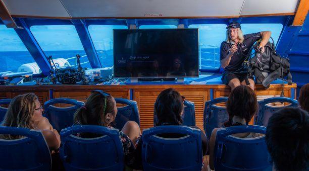 Scuba Diving Presentation
