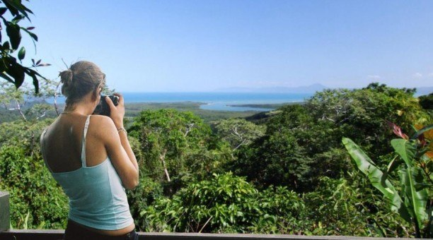 Cape Tribulation and Daintree Tour, North Queensland