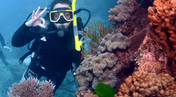 Scuba Diving with Compass Cruises