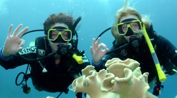Great Barrier Reef Scuba dive