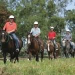 Horse Riding Cairns