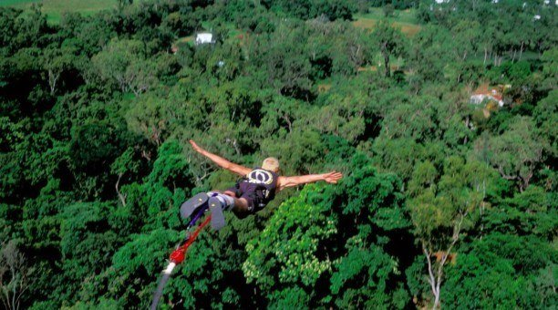 Bungy Jumping in the rainforest