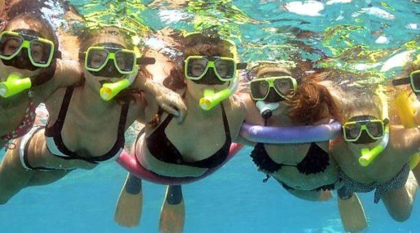 Snorkel the Great Barrier Reef, Cairns Australia