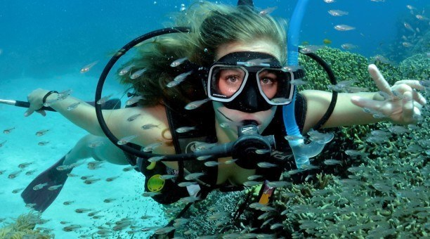 Scuba diving with fish