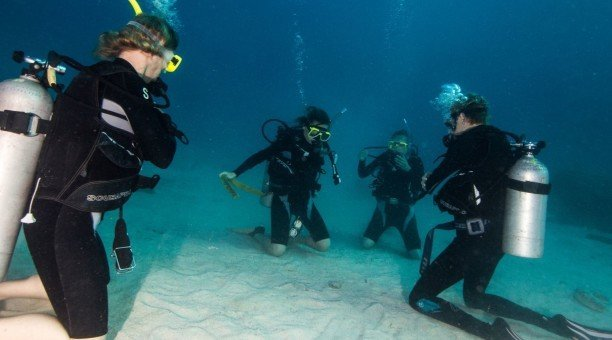 learn to scuba dive Australia