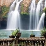 Reef, Rainforest and Paronella Park