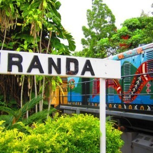 Green Island, Skyrail and Train (1 Day)