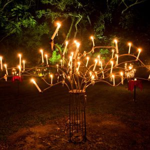 Flames of the Forest Aboriginal Cultural Experience