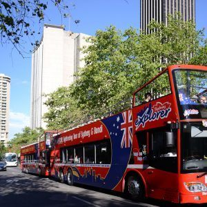 bus, backpacker travel, bus tour