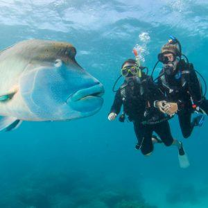 resort scuba dive no experience necessary