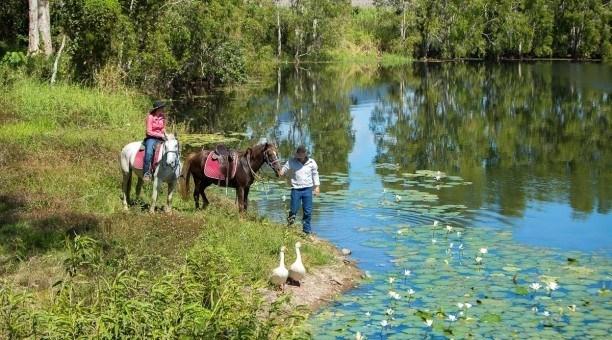 Horse riding tours Cairns Australia