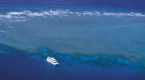 Port Douglas Reef Tour, Great Barrier Reef Australia