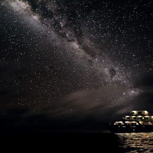 Night Tours Australia