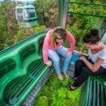 Women skyrail cabin