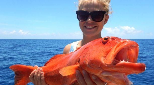 Catch a Coral Trout
