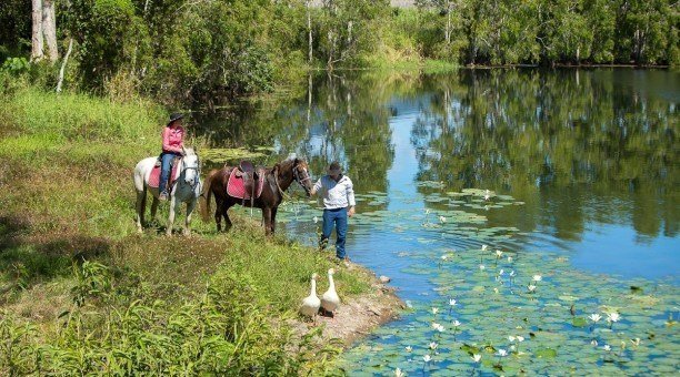 Horse riding tours Cairns Australia