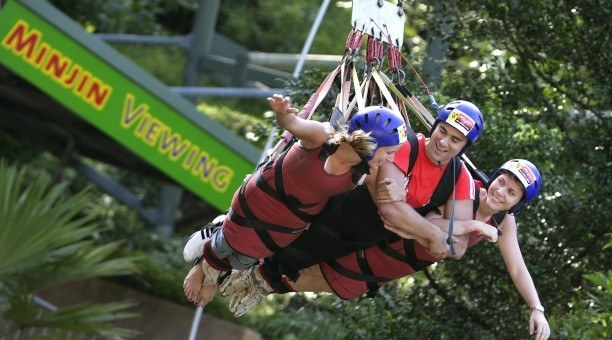 Grab your mates for this rush through the Rainforest
