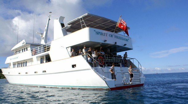 Spirit of Freedom North Queensland Dive Expeditions Australia