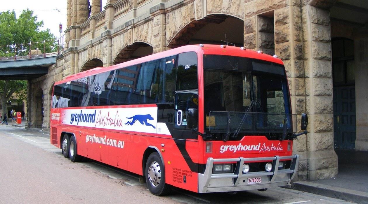 Greyhound Bus Passes