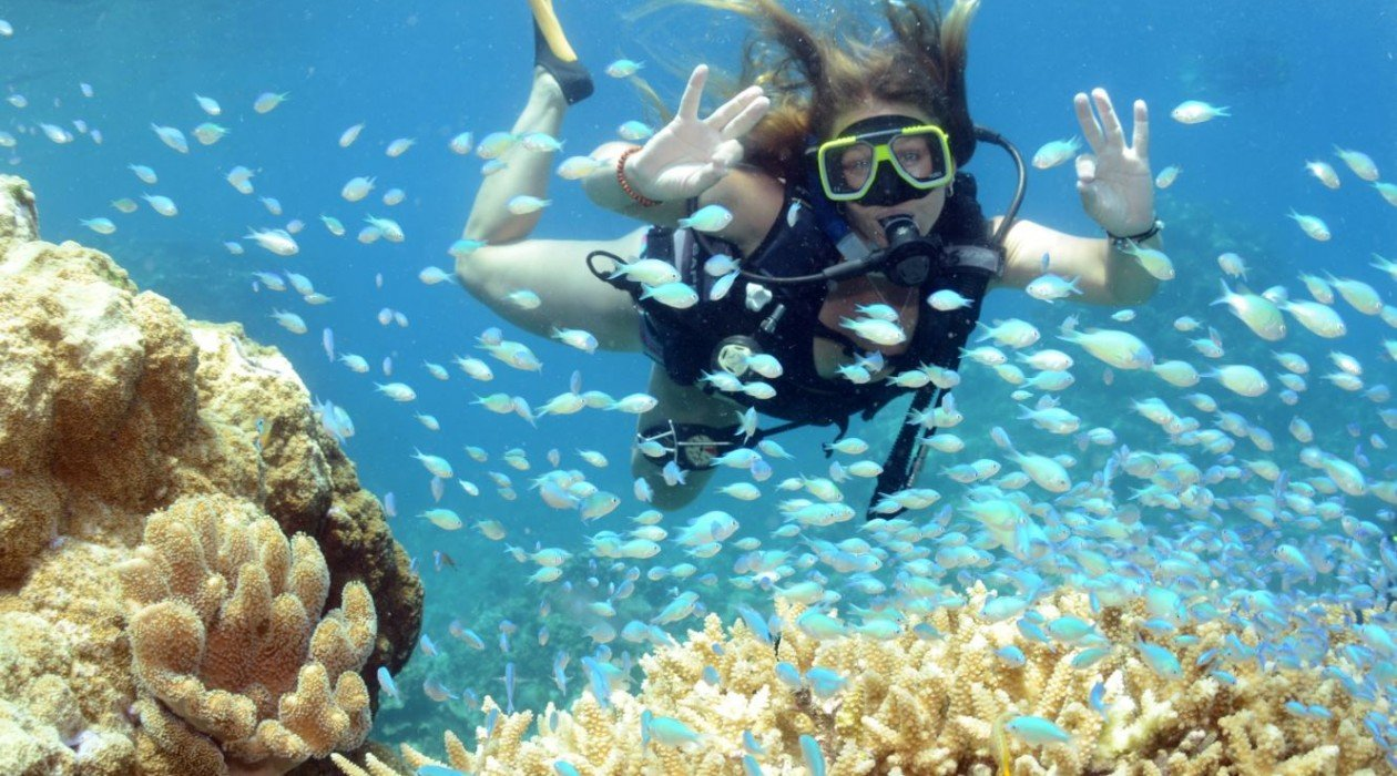 Top deck liveaboard rainforest hot getaways - Best place to dive the great barrier reef ...