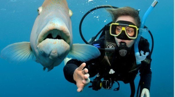 scuba diving on Australia's Great Barrier Reef