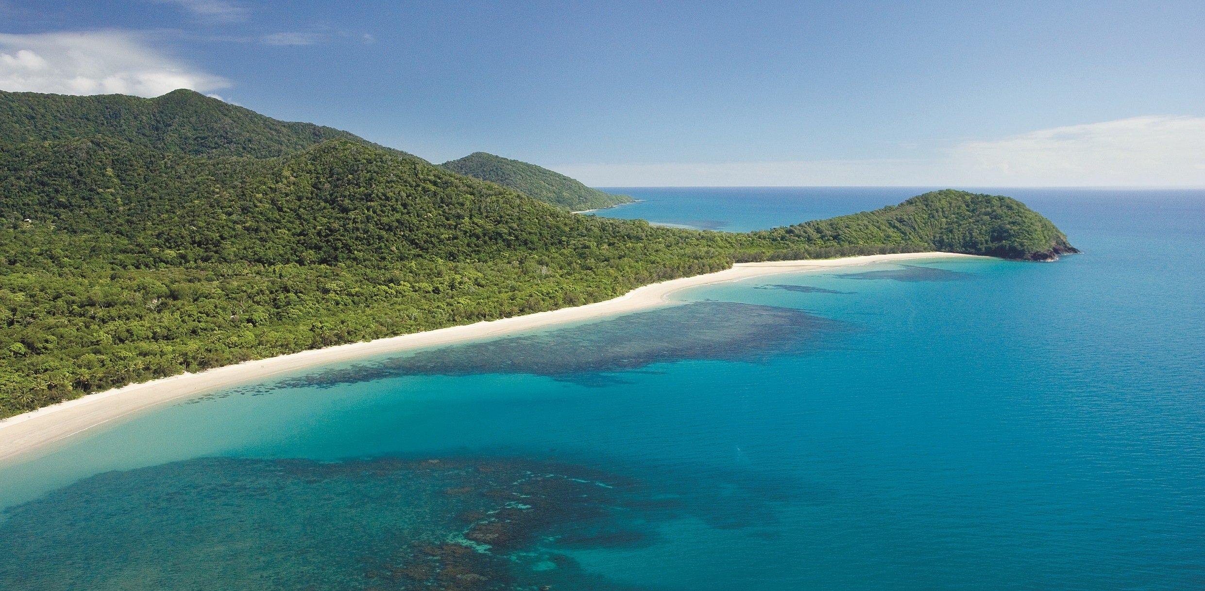 Daintree Tours From Cairns Tripadvisor