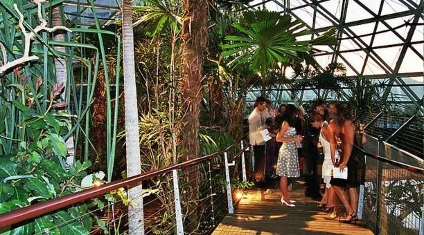 Cairns Zoo, North Queensland Australia