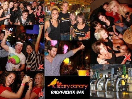 The Backpacker Bar, Scary Canary