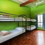 Byron Beach Resort - 4 Bed Dorm