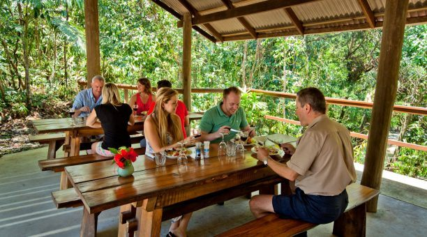 Beautiful BBQ lunch in the Daintree Rainforest