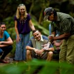 Cape Tribulation, Daintree and Mossman Gorge – Multilingual