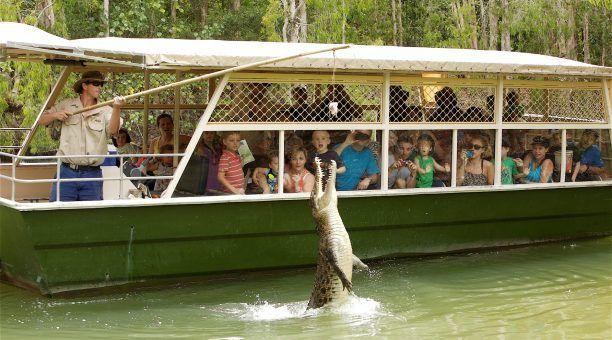 Hartleys Lagoon Cruise