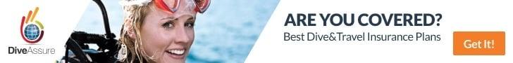 Dive Assure Insurance banner