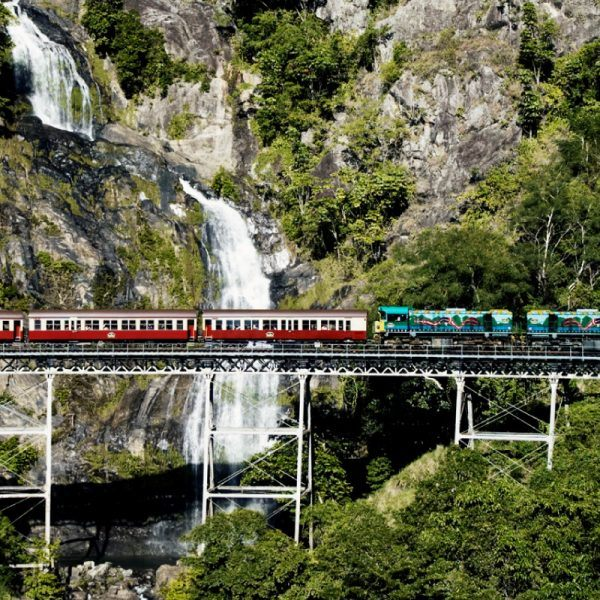 Kuranda Train, Skyrail and Hartley's Crocodile Adventure