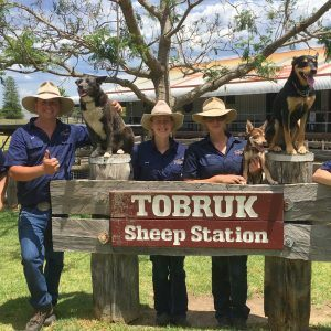 Sydney Outback Private Tour