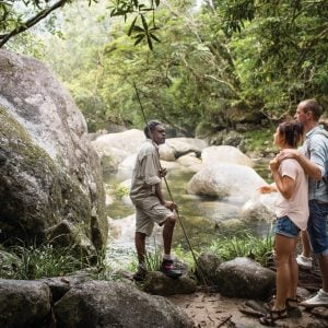 Cape Tribulation and Cooktown Aboriginal Tour