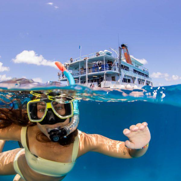 Snorkel the Great Barrier Reef