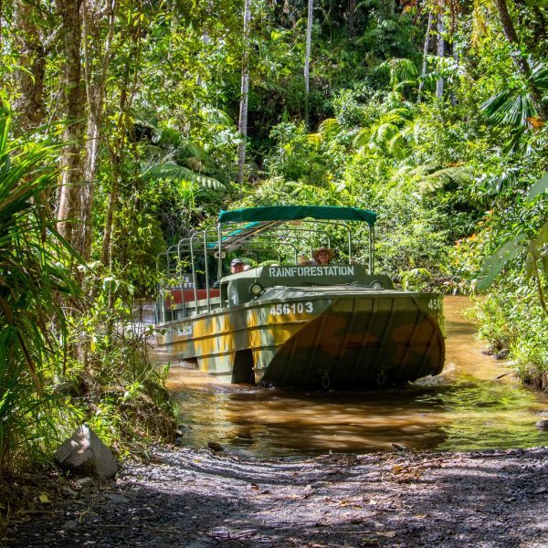 Kuranda Scenic Railway, Kuranda Village and Rainforestation