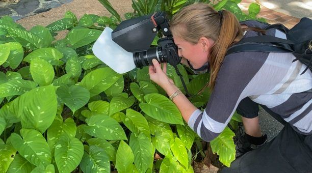 The perfect way to find those tiny insects and fungi to get the perfect macro shot